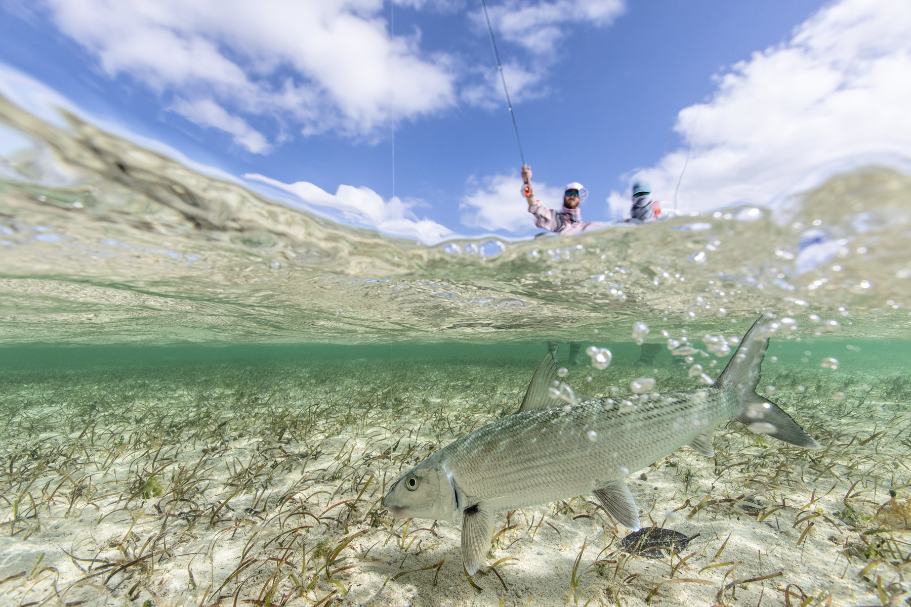 matt-jones-bahamas-fly-fishing-28